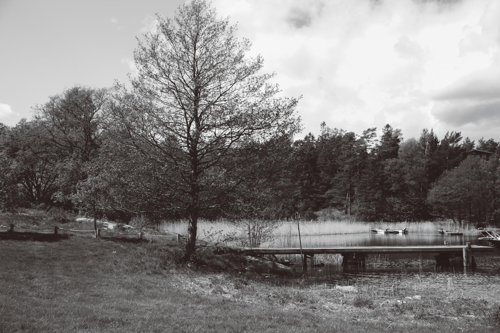 VJ_brollopsfotograf_stockholm-8